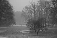 Oblivion HQ's - a view at the (winter)park (Arjan Gerritsen) Tags: winter bw snow photography photo foto fotografie sneeuw picture apeldoorn afbeelding oranjepark eos400d wwwoblivionnl