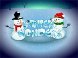 Online Winter Wonders Slots Review