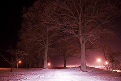 Meeting grounds (thehardshoulder) Tags: cold darkness sweden winters