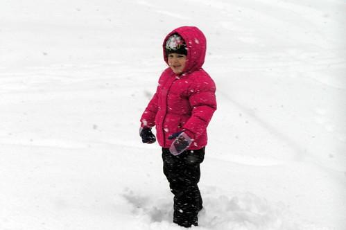 snow! (finally)