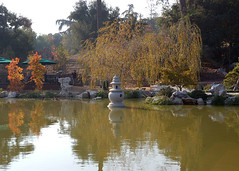 At the Chinese Garden Pond