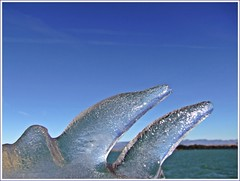 Delfin helado (Sigurd66) Tags: espaa ice gelo water landscape spain agua europa europe huesca dolphin pantano reservoir aragon delfin eis espagne dauphin dolfijn glace embalse delfino ijs ghiaccio golfinho naturesfinest tormos dofi sotonera almudevar