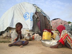 UNHCR News Story: Somalia: Aid Situation (UNHCR) Tags: africa news youth children women tent aid violence shelter information unhcr somalia visibility insecurity hornofafrica displacement newsstory idps plasticsheeting youtube humanitarianaid tensions internalconflict displacedpeople afgooye unrefugeeagency eastandhornofafrica internalviolence humanitariancrise