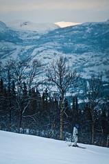 Team Nikon Hemsedal 5 (Lars Leganger) Tags: snow vinter nikon snø hemsedal sn teamnikon sn¿ d300s