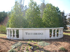 Cary NC Whitebridge Homes for sale-Linda Lohman