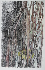 (Hava Matzkin Eilam Art) Tags: trees art nature ink drawing portfolio  hava eilam  matzkin