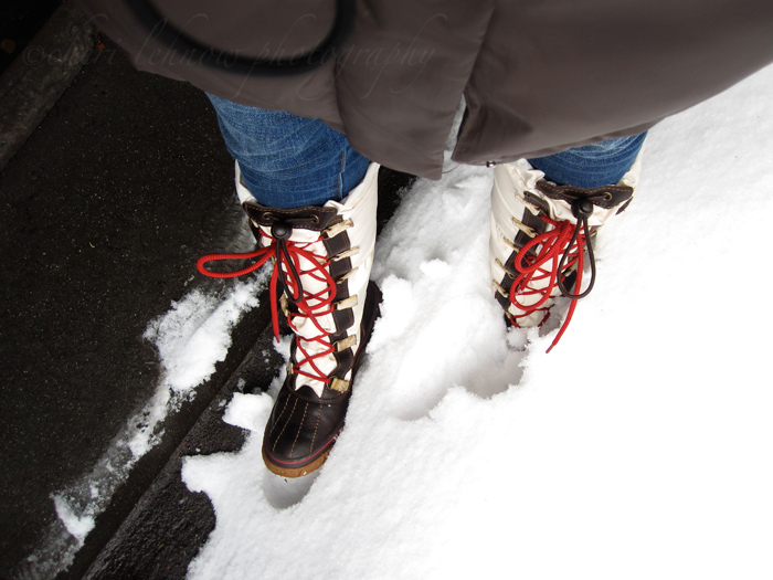 snowstorm_04.jpg