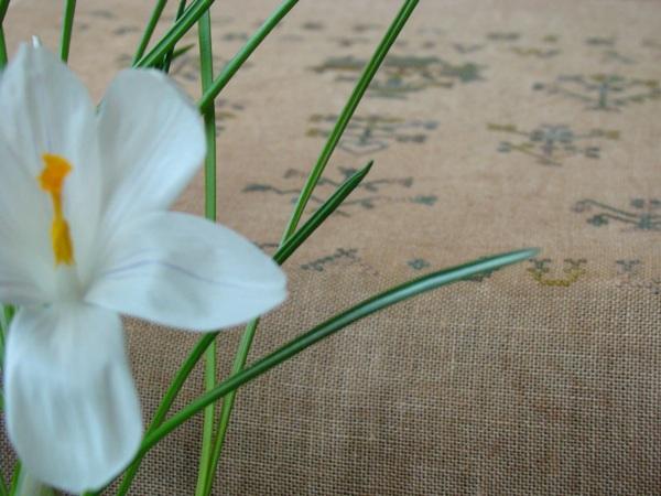 Blooms for Sarah