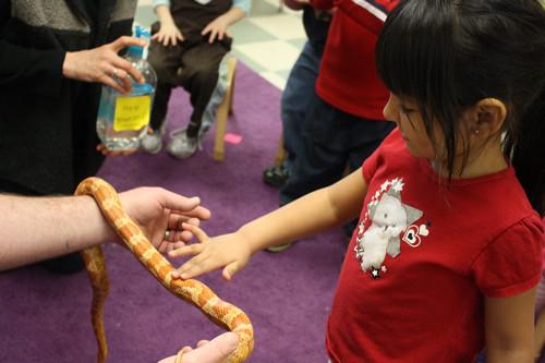 cooper the snake