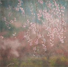 (YORIKO'S EYE) Tags: art mywinners colorphotoaward magicunicornverybest selectbestexcellence sbfmasterpiece