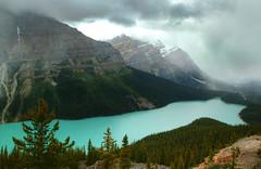 Peyto Lake (Omar Branine) Tags: lake canada nature landscape rockies scenic alberta banff moraine icefield peyto