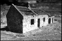 derelict (James Holland) Tags: ruin gimp derelict fauxinfrared