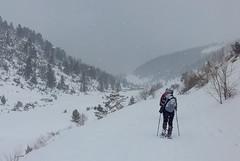 (Boris Genov) Tags: parangalitsa reserve парангалица рила планина зима сняг winter snow