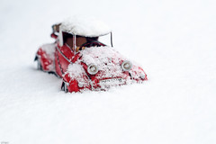 She only likes me for my body...... (eleni m ( busy remodeling house and garden)) Tags: toy car toycar outdoor garden winter snow dof quote red white whitebackground messerschmitt