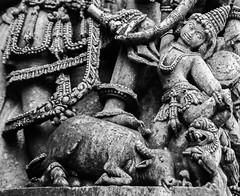 Halebeedu_Durga (Swaminathan Natarajan) Tags: hoysala india art canon canon550d karnataka historic architecture stone travel photography travelphotography