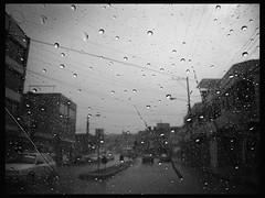 Mirando llover
