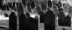 (Jerry Rodgers) Tags: cemeteries tree cemetery grave boston angel skeleton death massachusetts headstone tombstone gravestone fathertime grimreaper gravemarker kingschapelburyingground buryingground jerryrodgers