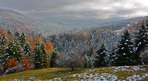 Transylvania - Sinaiia - 37