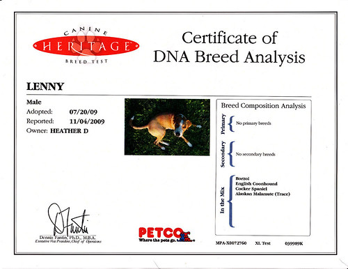 Lenny's DNA test
