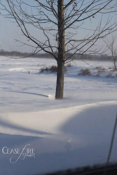 12-9-snowstorm3