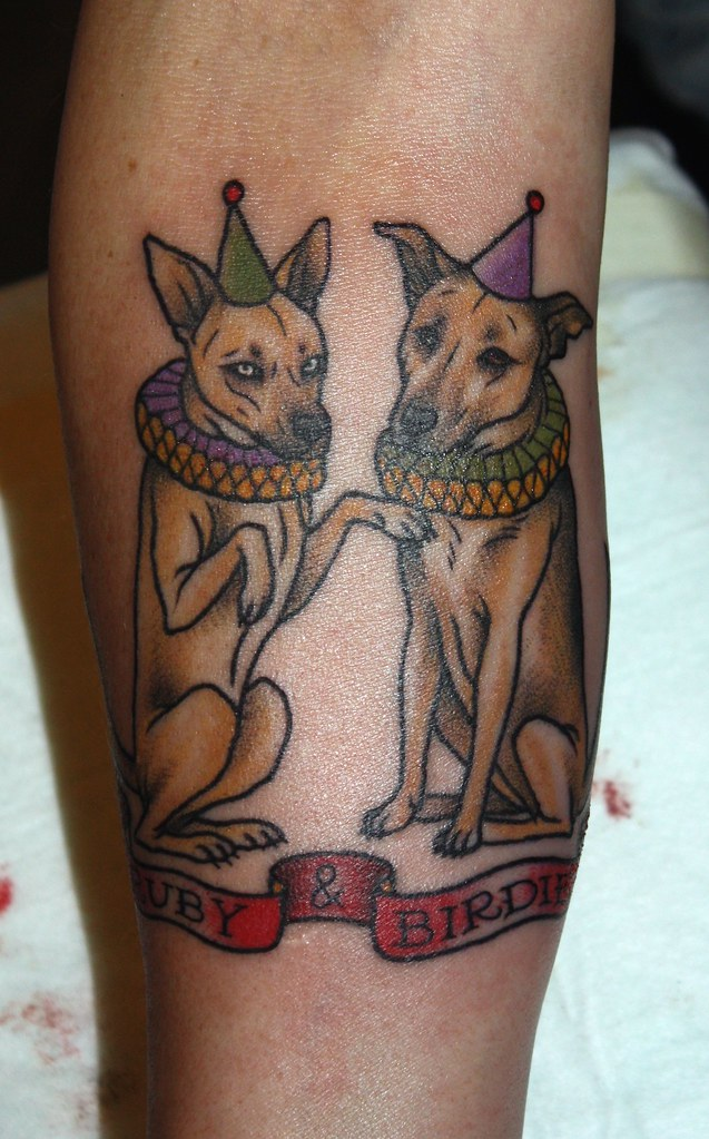 The world 39 s best photos of circus and kaptenhanna flickr for Funny dog tattoos