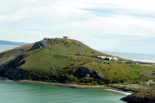 21_024 Dunedin Bay NZ