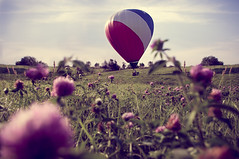 National Balloon Classic (thematthewsmith) Tags: pink flowers blue red sky white hot green field grass air balloon iowa indianola purble