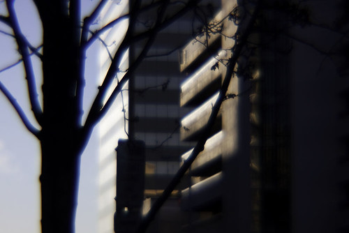 Diana lens - buildings and trees