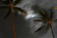 Night Moon in Maui (LauraClements) Tags: moon night hawaii maui framing mauihawaii julietclaire
