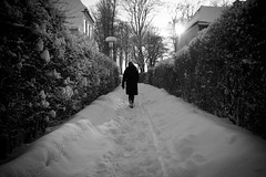 The Road Less Travelled (Jonas Rask) Tags: road winter bw white snow black canon denmark eos path sigma christine hedge 18200mm 450d