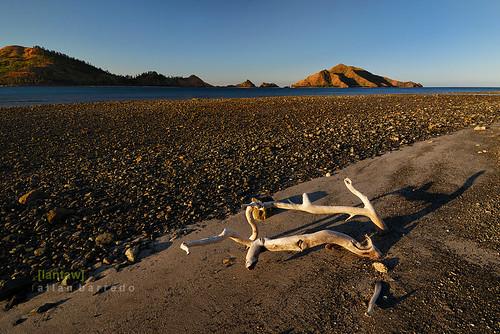 Textured Beach