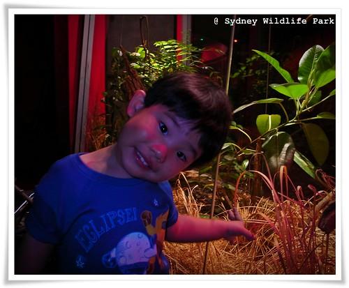 RIMG2003blog