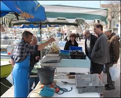 Le pcheur Juanico vend son poisson (Pantchoa) Tags: pcheur laciotat port provence mditerrane vend poisson balance pse quai talage vente petitpcheur streetlife photoderue photovole pantchoa franoisdenodrest