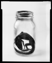 ([shannon.k]) Tags: bw white film studio 4x5 jars scannednegativesblack