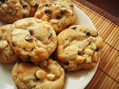 "alton brown's ""the chewy"" chocolate chip cookie - 19"