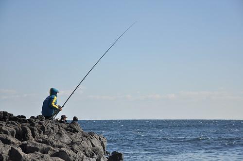Pescando gaviotas