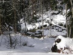 Water below Deer Creek road.