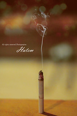 Dunhill ( ||  ) Tags: smoke smoking cigarettes dunhill hatem            alsuwaida