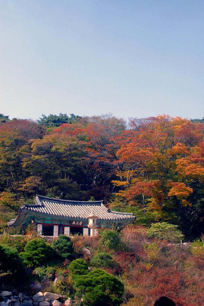石窟庵と仏国寺の画像 p1_36