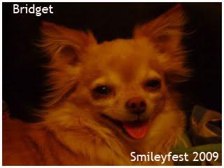 02-Bridget---1