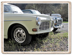 Volvo Amazon (gemeiny) Tags: blue white canon vintage volvo beige backyard amazon fifties sweden swedish powershot oldtimer junkyard sixties volvoamazon restauration volvo121
