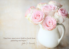 pursuing hopes. (polkadotandplaid) Tags: flowers roses stilllife texture beauty quote pitcher vignette pinkroses