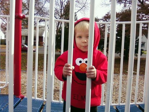 Monkey behind bars at park