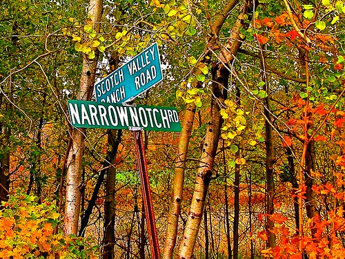 Narrow Notch sign