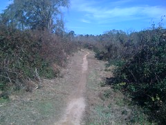 Yargo Main Trail