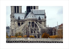 Paris fall parade (manu/manuela) Tags: bridge autumn paris france fall church seine automne river cathedral fiume ponte notredame chiesa cathdrale pont duomo francia glise navigation parigi batobus abside apse chevet pontdelatournelle iloveparis tournellebridge