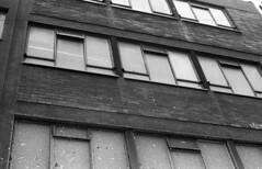 windows (Emma Swann) Tags: olympusom10 fujineopan1600