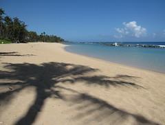 Dorado Beach #2