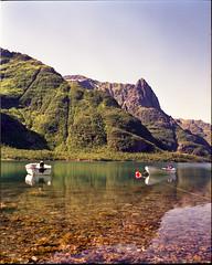 (kristians) Tags: sea mamiya film norway norge scan epson lofoten fjords mamiya7 v700 65mmf4