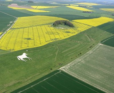 Crop Circle Overview